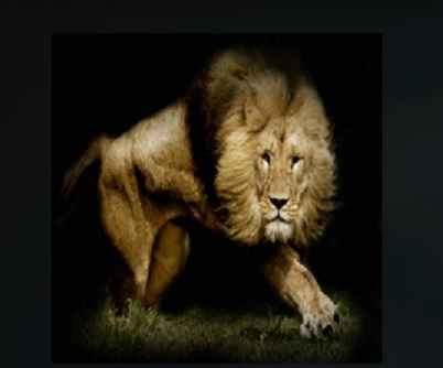 How to Install Lions Den Add-on Kodi 17.1 Krypton pic 1