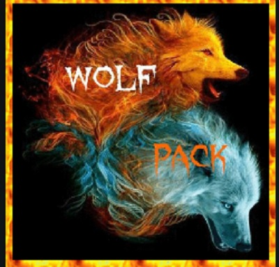How to Install WolfPack Kodi Add-on with Screenshots pic 1
