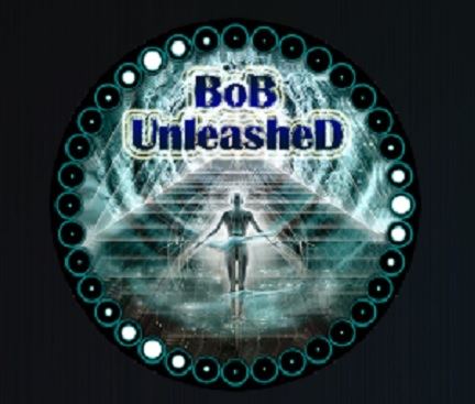 How to Install Bob Unleashed Kodi Add-on with Screenshots pic 1