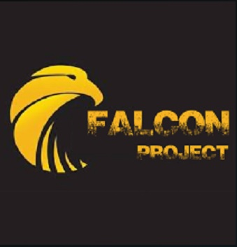 How to Install Falcon Project Kodi Add-on with Screenshots pic 1