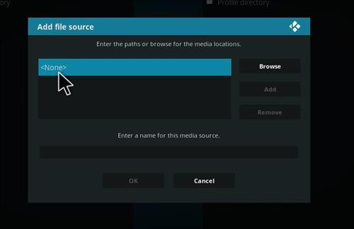 How to Install Project X Kodi Add-on with Screenshots step 4