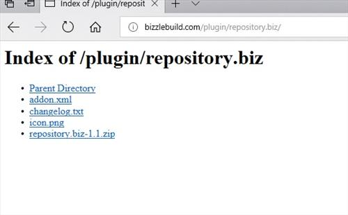 manual and download bizzle builds Repository pic 1
