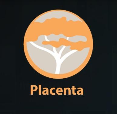 Best Working Kodi 18 Leia Addons Placenta