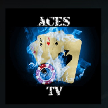 How to Install Ace TV Kodi Add-on with Screenshots pic 1