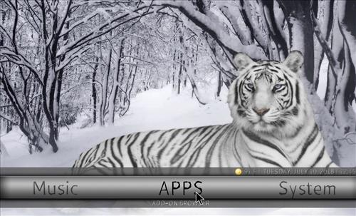 How to Install Ice Tigris Kodi Build with Screenshots pic 4