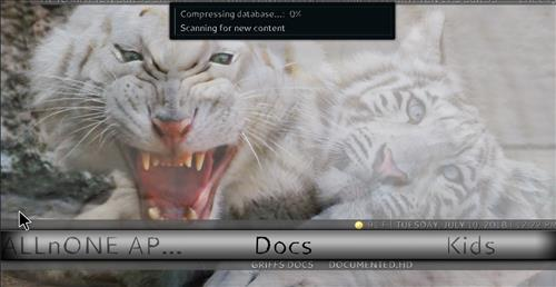 How to Install Ice Tigris Kodi Build with Screenshots step 21