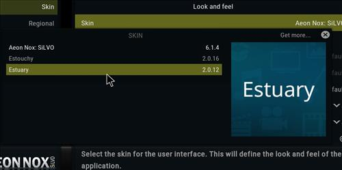 How to change the Skin back to Default Estuary leia silvo step 4