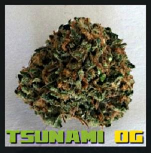 How to Install Tsunami OG Kodi Add-on with Screenshots pic 1