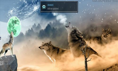 How to Install Wolf Kodi Build 18 Liea step 22
