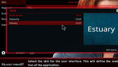 How to change the Skin back to Default Estuary black widow step 4